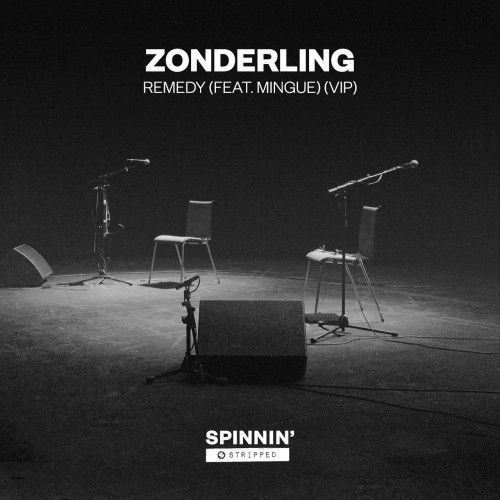 Remedy (feat. Mingue) [VIP]