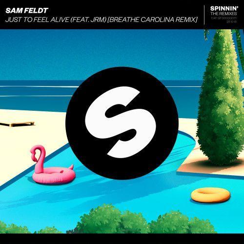 Just To Feel Alive (feat. JRM) [Breathe Carolina Remix]